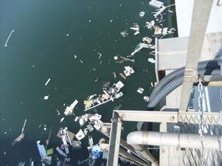 湾岸のゴミ.JPG